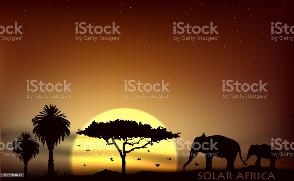 sunrise over the savannah with African elephants and trees
