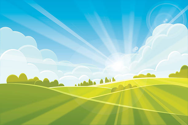 sunrise summer or spring landscape - vector illustration - панорамный stock illustrations