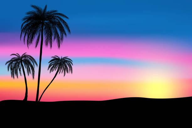 stockillustraties, clipart, cartoons en iconen met zonsondergang en tropische palmbomen met kleurrijke landschap-achtergrond, vector, illustratie, eps 10-bestand - twilight