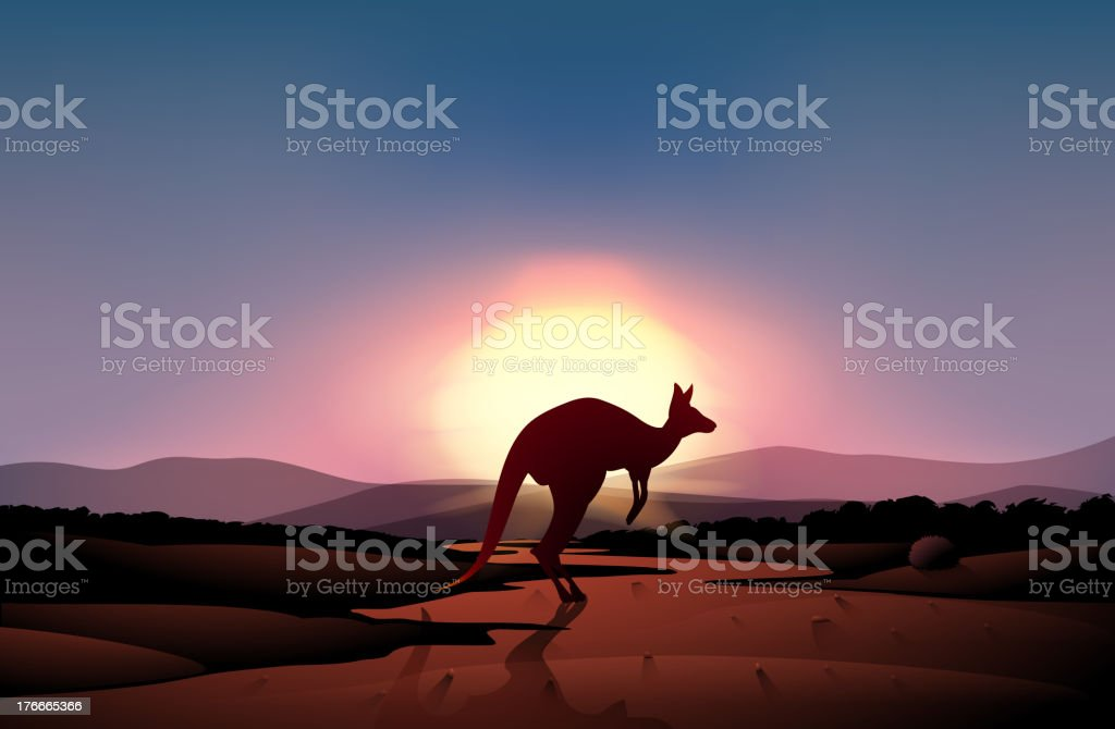 sunset at the desert with a kangaroo royalty-free sunset at the desert with a kangaroo stock vector art & more images of animal