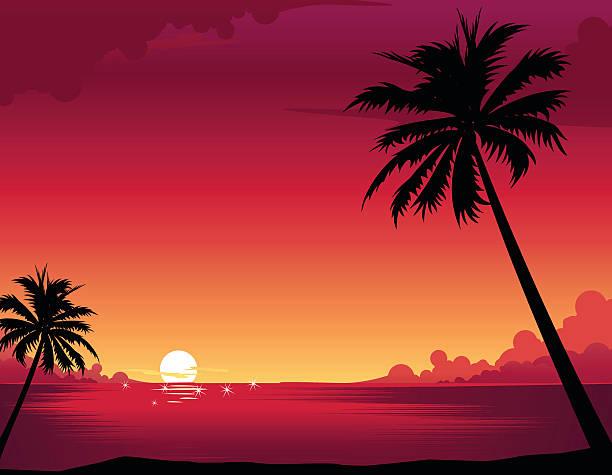 Coucher de soleil sur la plage - Illustration vectorielle