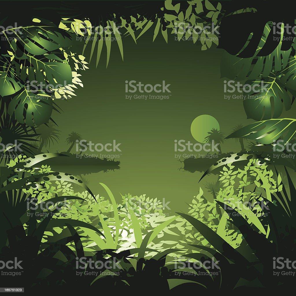 sunset in jungle vector art illustration