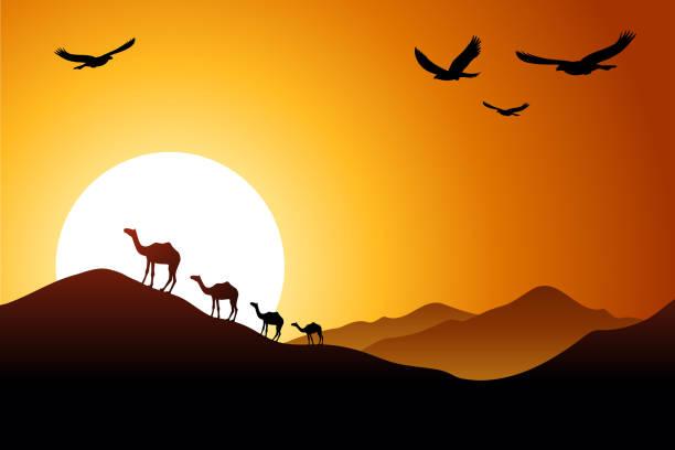 砂漠の夕日 - 砂漠点のイラスト素材/クリップアート素材/マンガ素材/アイコン素材