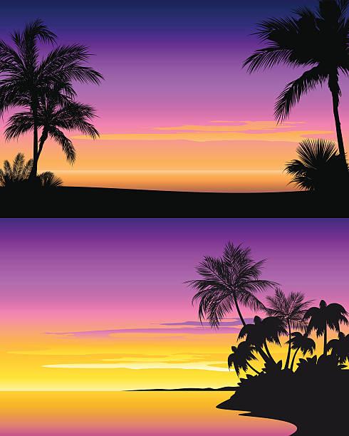 sonnenuntergang am strand - buchten stock-grafiken, -clipart, -cartoons und -symbole