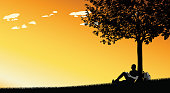 Student sitting under a tree at sunset and reading a book