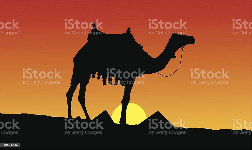sunset scene in egypt II royalty-free sunset scene in egypt ii stock vector art & more images of ancient