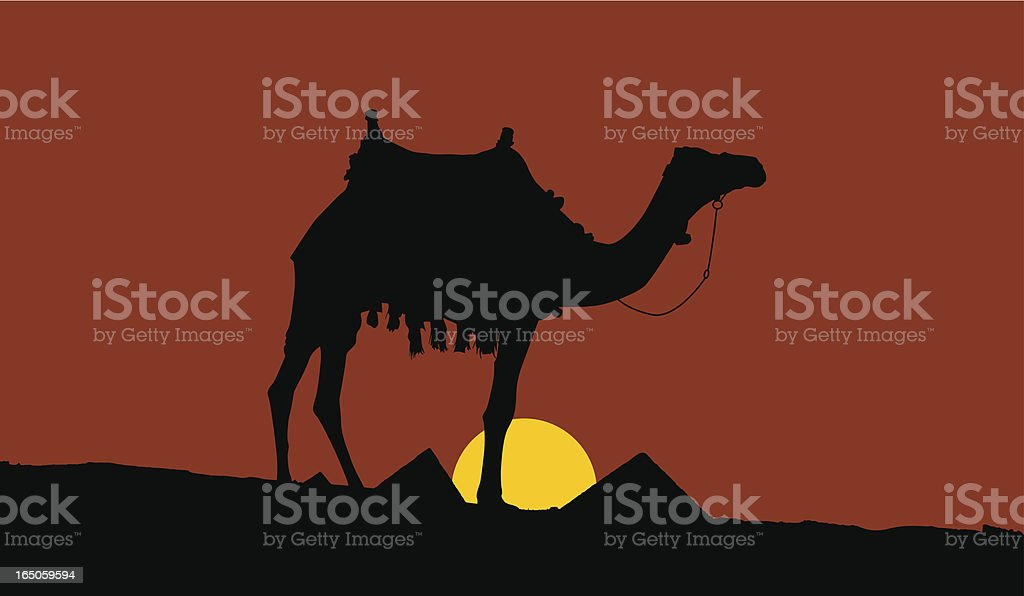 sunset scene in egypt royalty-free stock vector art