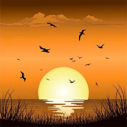 Sunset Sunrise at Sea Ocean