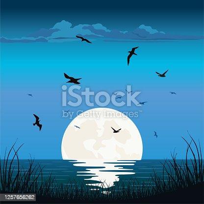 istock Sunset Sunrise at Sea Ocean 1257656262