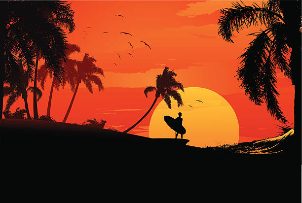 sunset surfer vector art illustration