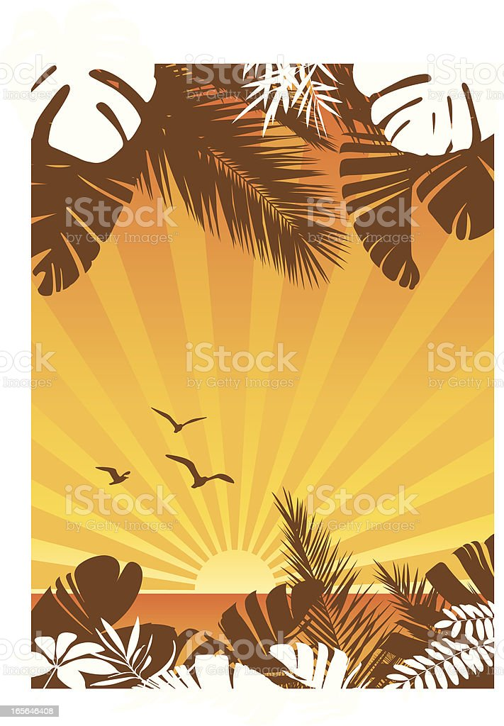 Sunset tropical royalty-free sunset tropical stock vector art & more images of backgrounds