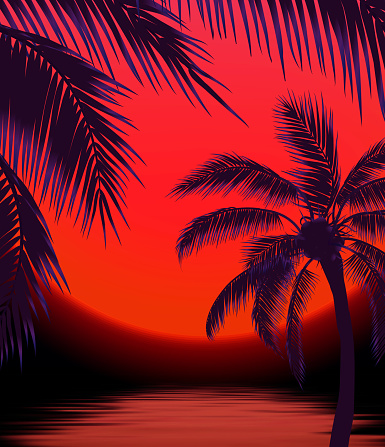 Sunset with Palm Trees, Sun and Palm Leaf