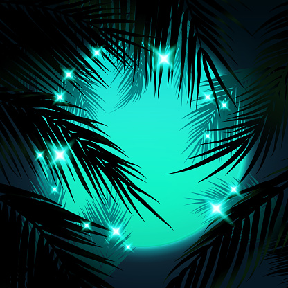 Sunset with Palm Trees, Turquoise Sun and Palm Leaf
