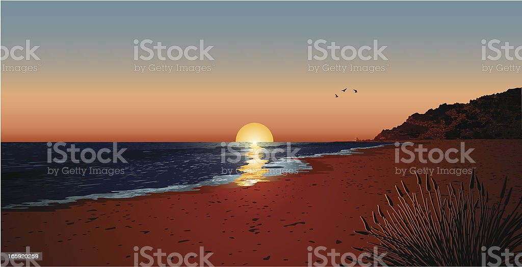 sunset  with seagulls vector art illustration