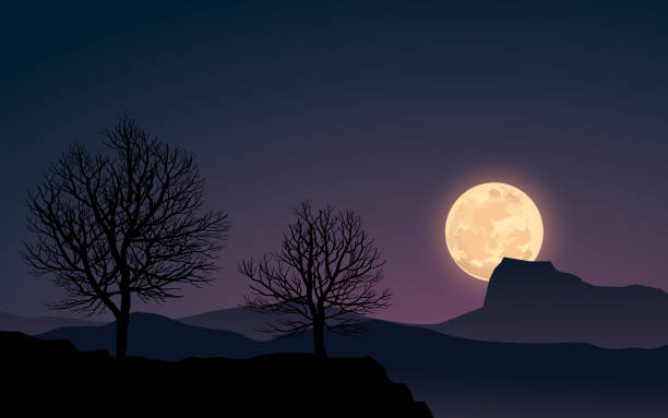 Super moon night landscape with full moon and trees moon surface stock illustrations