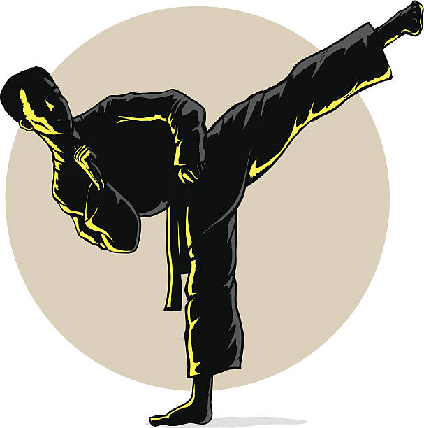 super sidekick in shadow - taekwondo stock illustrations, clip art, cartoons, & icons