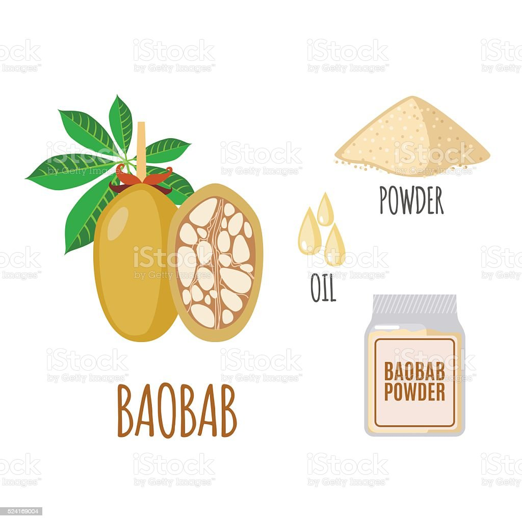 Superfood baobab set in flat style. vector art illustration