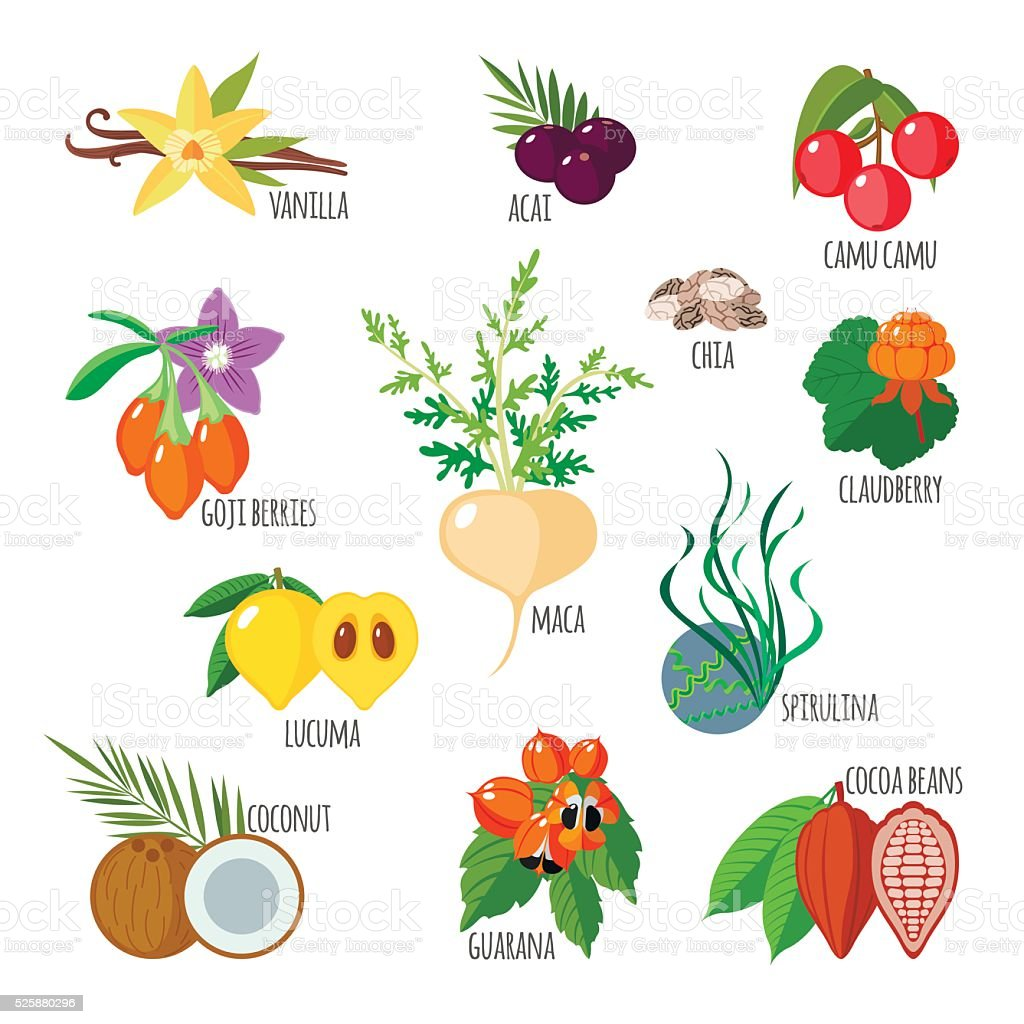 Superfoods in flat style vector art illustration