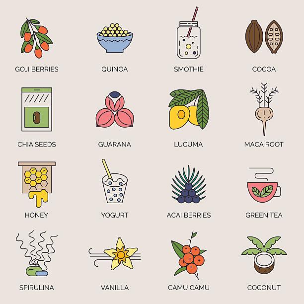 ilustrações de stock, clip art, desenhos animados e ícones de superfoods line vector icons. - quinoa