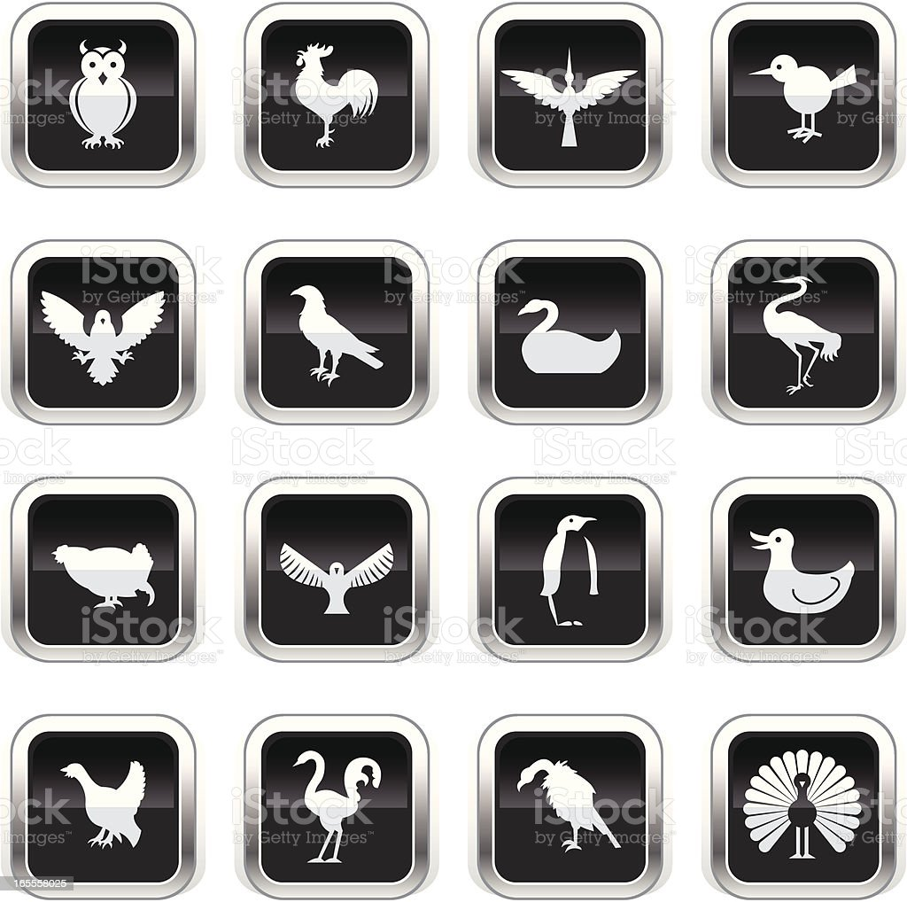 Supergloss Black Icons - Birds royalty-free stock vector art