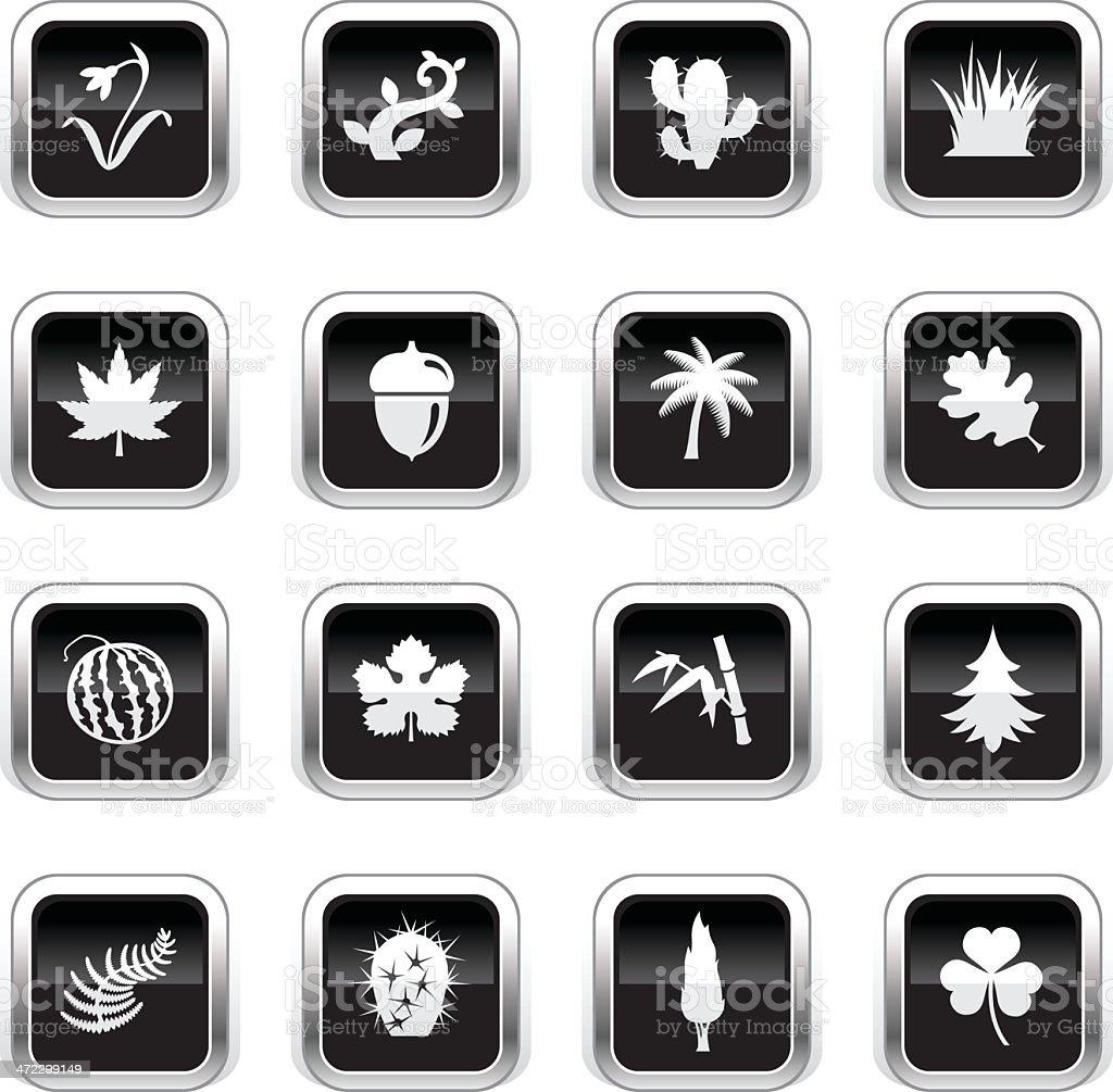 Supergloss Black Icons - Botanic royalty-free stock vector art