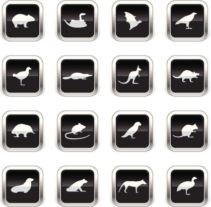 Supergloss Black Icons - Tasmanian Animals