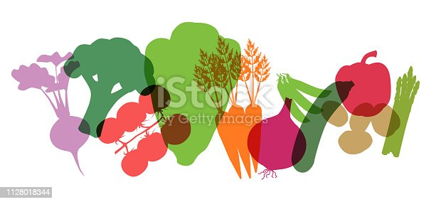 Various Supermarket Vegetables