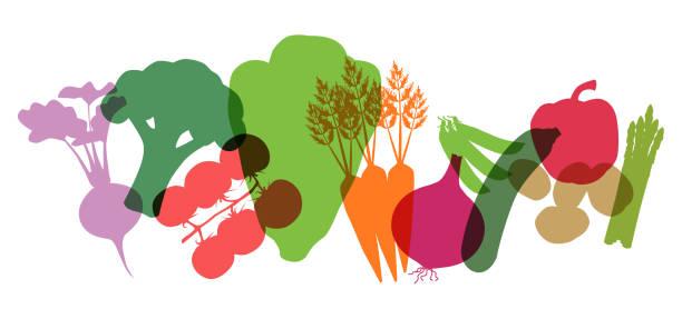 Supermarket Vegetables Various Supermarket Vegetables cooking silhouettes stock illustrations