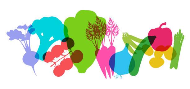 supermarket vegetables - root vegetable stock illustrations