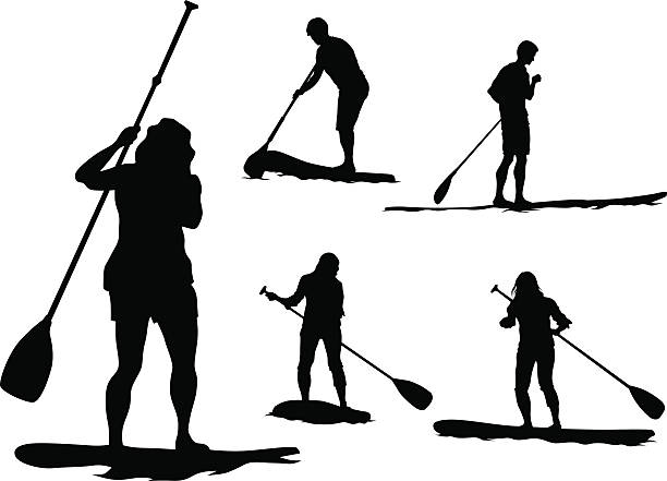 Best Paddle Board Illustrations Royalty Free Vector