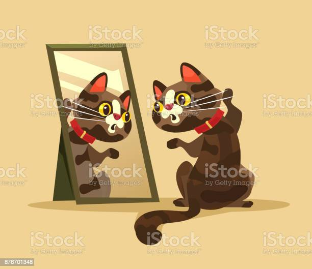 Surprised curious cat character looking at mirror vector id876701348?b=1&k=6&m=876701348&s=612x612&h=ecudrc0ywt73uhnwgwzhhf7mqcuvqygfr2wvndybcog=