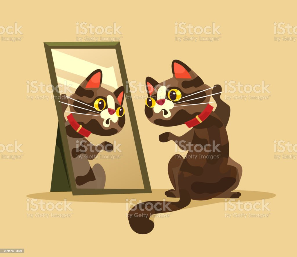 Surprised curious cat character looking at mirror vector art illustration