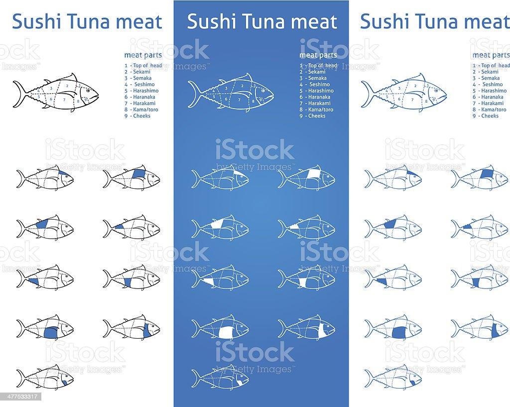 Sushi tuna meat cuts diagram set royalty-free stock vector art
