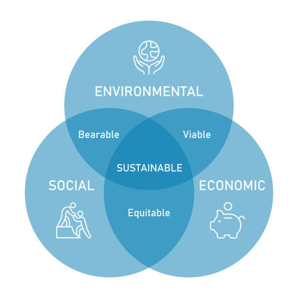 사회적, 경제적, 환경적 지속가능성 하위 유형을 포함한 지속가능성 벤 다이어그램 - 사회 정의 stock illustrations