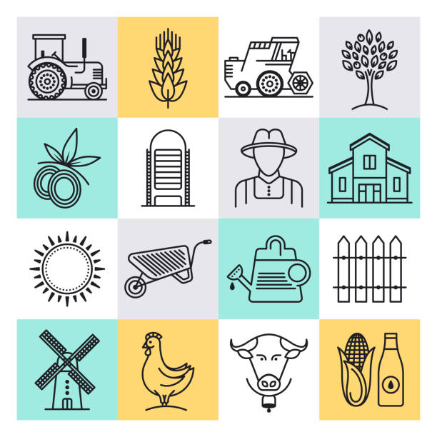 Sustainable Agricultural Production Outline Style Vector Icon Set Sustainable agricultural production outline style concept with symbols. Line vector icon sets for infographics and web designs. garden center stock illustrations