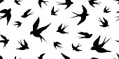 Swallow bird vector Seamless Pattern wallpaper background