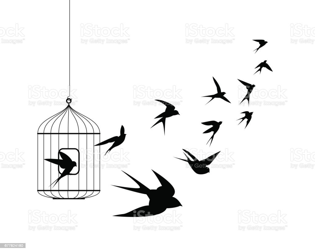 Swallow birds flying out of cage vector art illustration