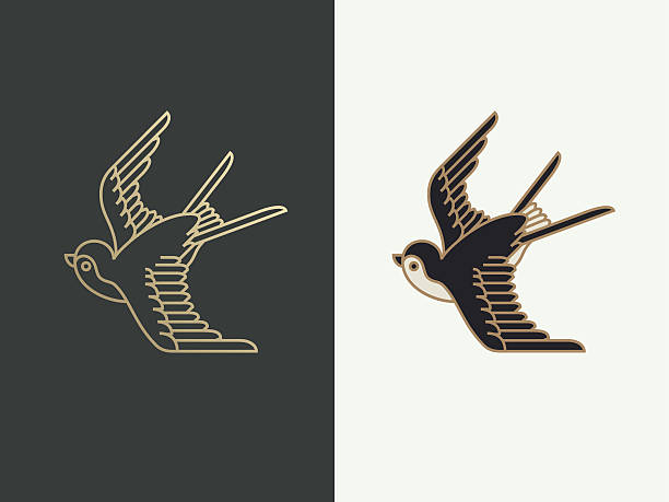 illustrations, cliparts, dessins animés et icônes de avaler  - tatouages d'oiseaux