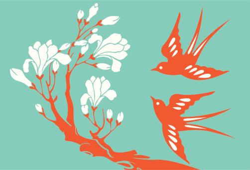 Swallows & Magnolia