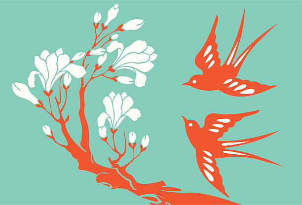 Swallows & Magnolia Vector Illustration of swallows & magnolia. bird backgrounds stock illustrations