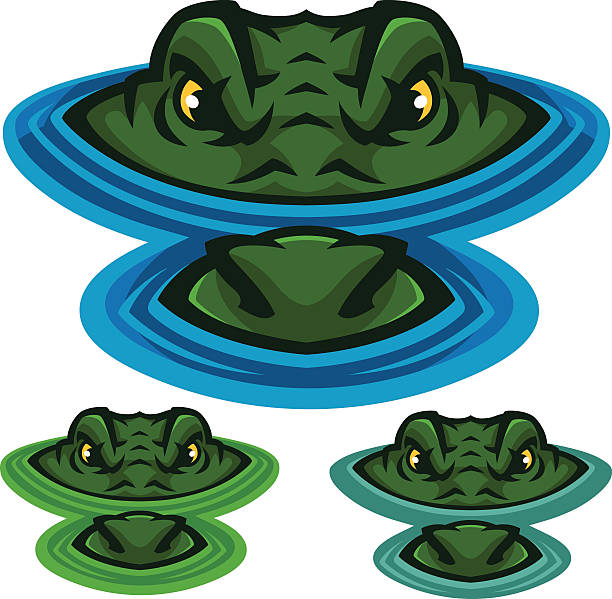 swamp alligator - alligator stock illustrations