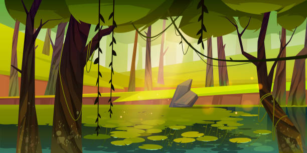 Swamp or lake with water lilies in forest, nature Swamp or lake with water lilies in forest. Nature landscape with marsh in deep wood. Computer game background, fantasy mystic scenery view with wild pond covered with ooze, Cartoon vector illustration moss stock illustrations