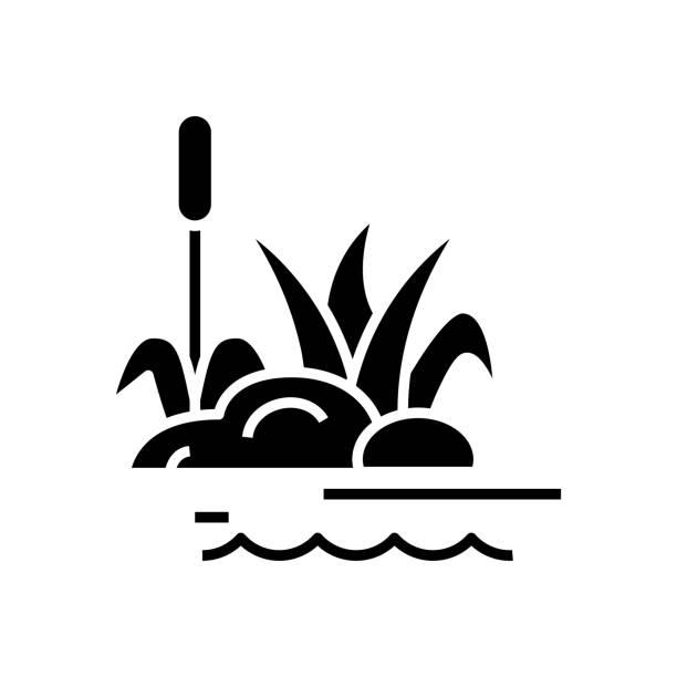 stockillustraties, clipart, cartoons en iconen met het planten zwart pictogram van de moerasinstallaties, conceptillustratie, vector vlak symbool, glyphteken - wildplassen