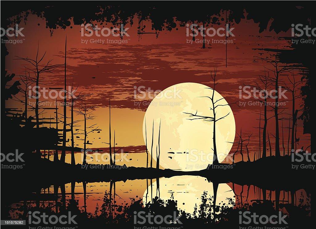 swamp sunset vector art illustration