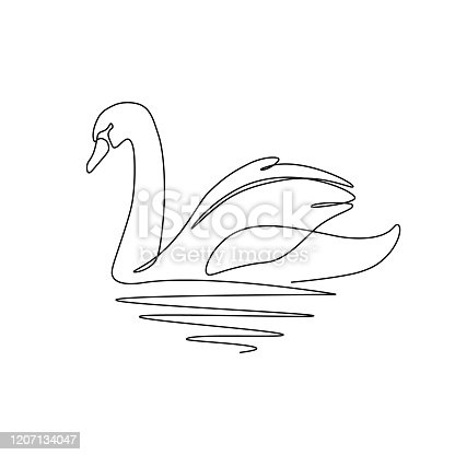 Swan bird on water surface in continuous line art drawing style. Black linear sketch isolated on white background. Vector illustration