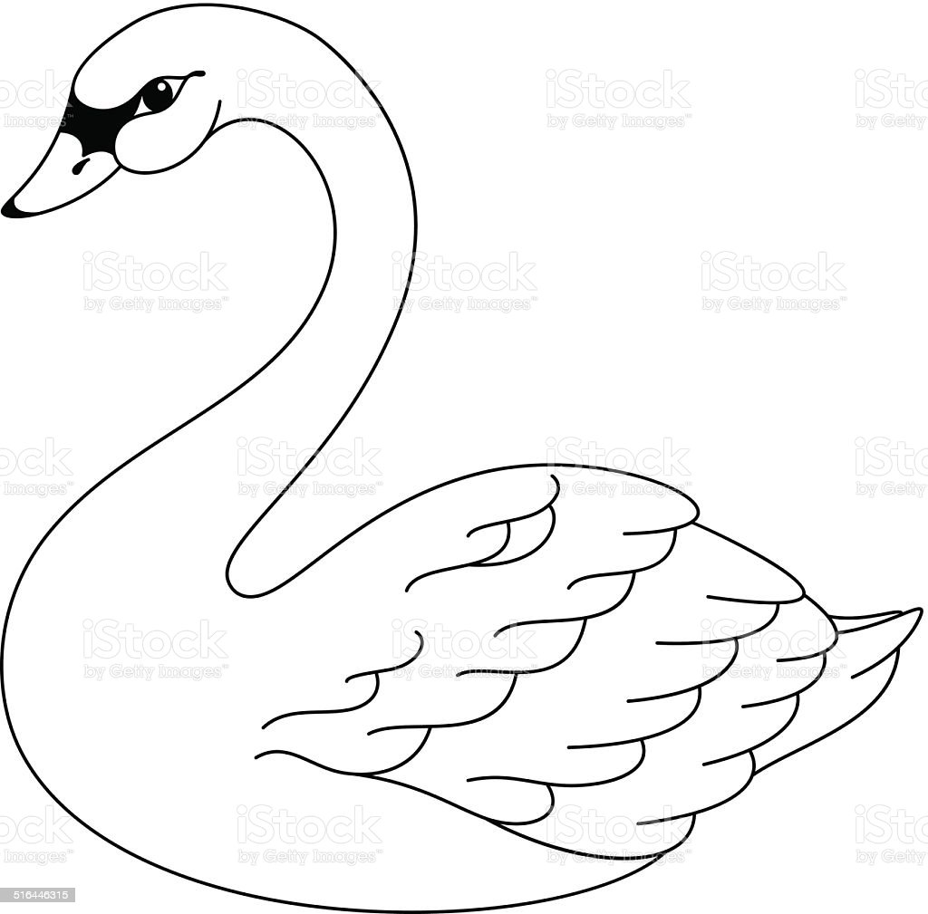 Swan Coloring Page Stock Illustration Download Image Now