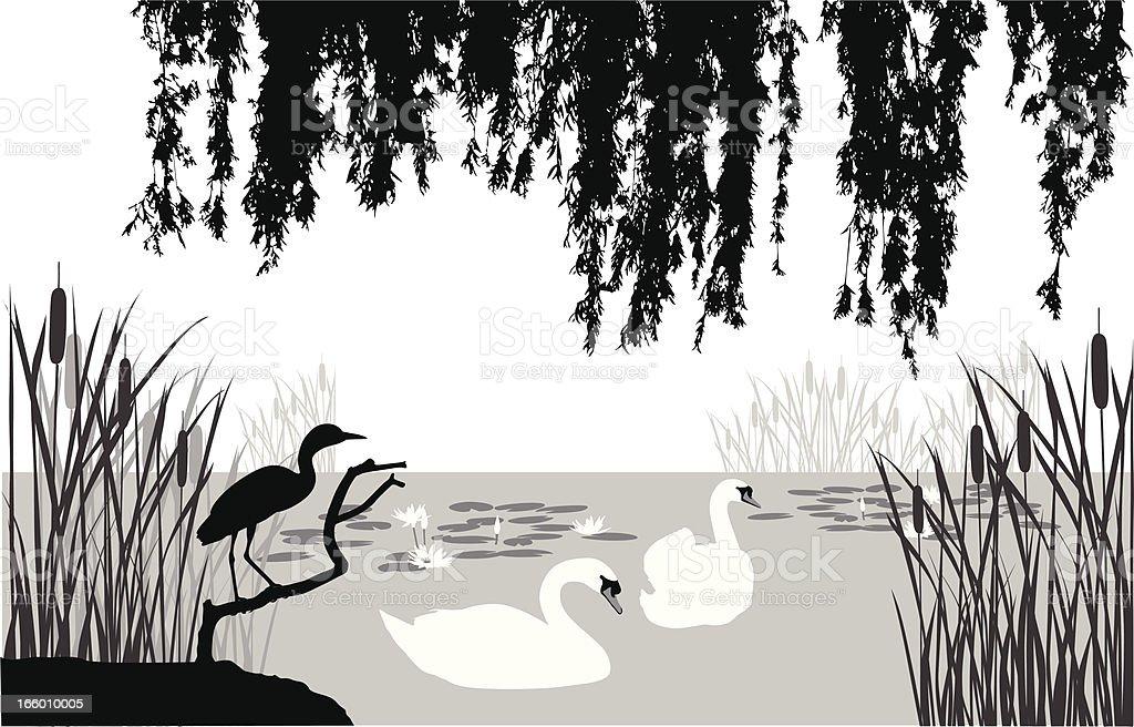 Swan'n Heron vector art illustration