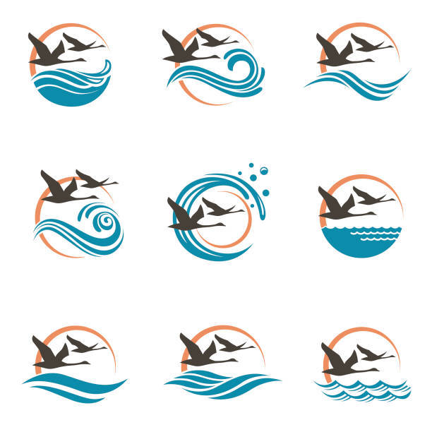 swans and waves icons abstract icon collection with swans, sun and waves goose bird stock illustrations
