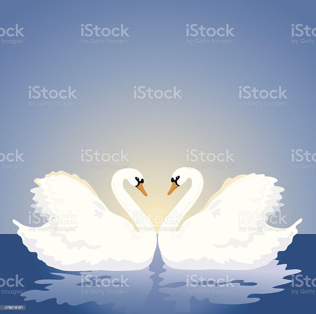 Swans royalty-free stock vector art