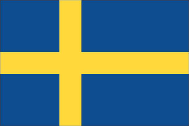bildbanksillustrationer, clip art samt tecknat material och ikoner med sweden flag - sweden